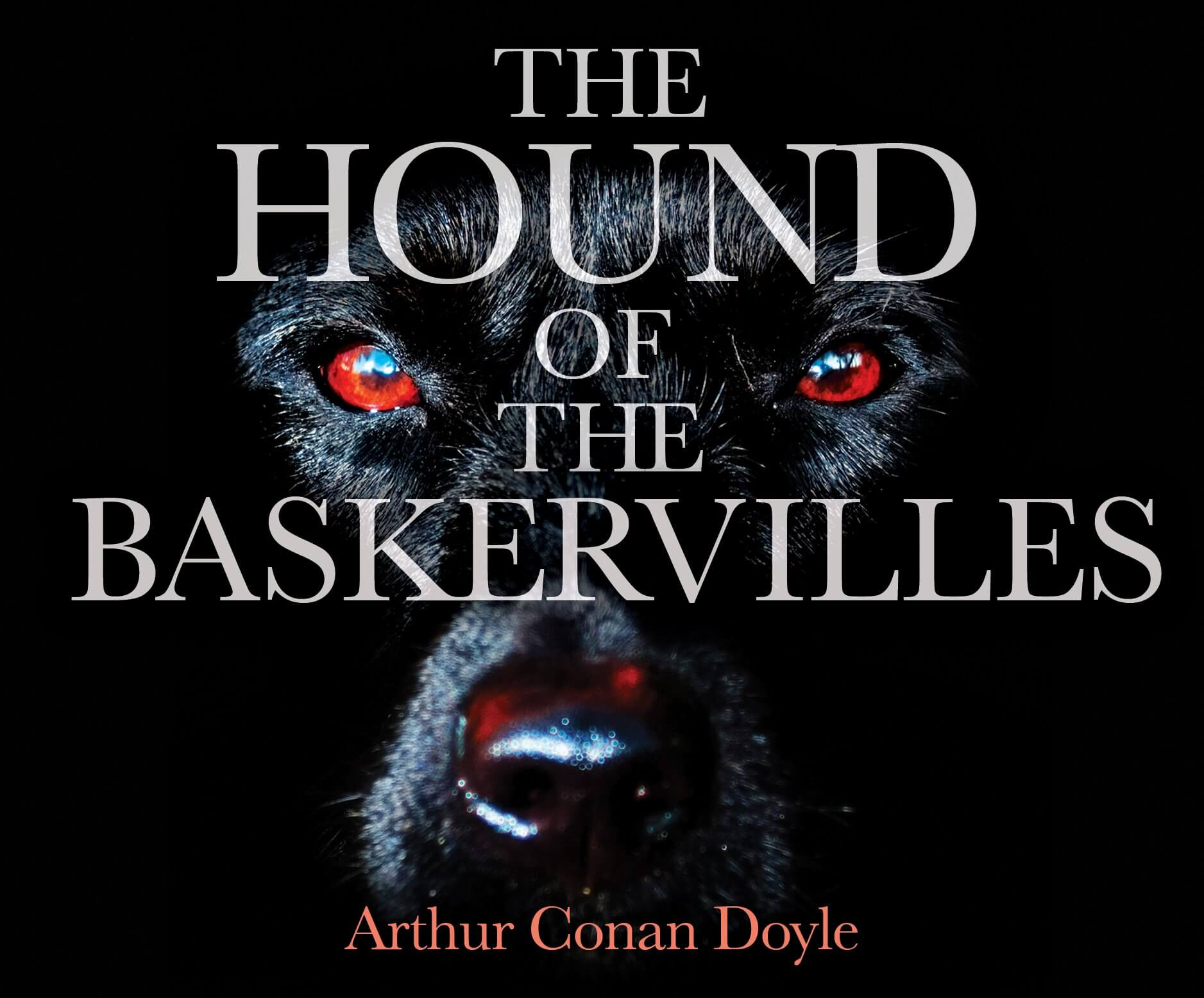 The Hound of the Baskervilles Audio CD –