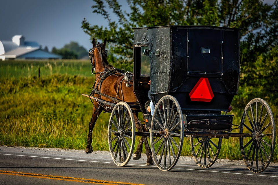 FIVE AMISH MYSTERY WRITERS WORTH INVESTIGATING