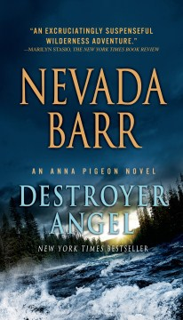 Destroyer Angel by Nevada Barr