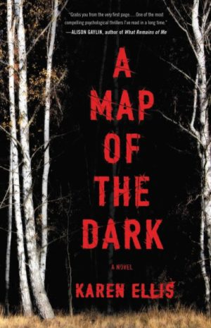 A Map of the Dark by Karen Ellis (Hardcover)